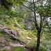Unübersichtliche Linkskurve im Val d'Iragna