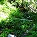 Grümela Grabe. Über die Brücke führt der Alpenpässe Weg. Ich nehme den Pfad im Vordergrund.