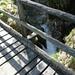 Brücke über den Ri di Tomè