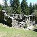Die Ruine von Büsan, umgeben von gepflegter Waldwiese