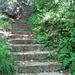 la scalinata che ci conduce alla trincea