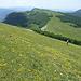 Weglos bergab zum Col de Chironne, kam uns steiler vor als es hier ausschaut.