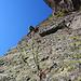 Oggi ho scoperto che il verrucano lombardo è proprio una bella roccia :)