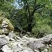Der Wanderweg führt hier einiges oberhalb des Talbodens durch.
