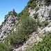 kaum erkennbar der hier wieder ausgesetzte Pfad in der W-Flanke unter einem Felsturm
