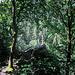 Das Alsdorfer Kreuz, auf dem Felsvorsprung