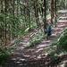 Belgenbach Trail