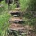 I gradini che salgono verso la zona del guado