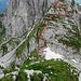 Im Gelände relativiert sich die Steilheit. Das Gelände ist eher einfach (Genuss Klettern im 2. Schwierigkeitsgrad). In Rot unsere ungefähre Aufstiegsspur.