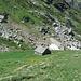 Alpe Naga
