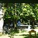 Wirtshaus Zur Alten Tram, unsere Räder werden bewacht.