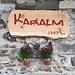 <b>Karalm (1747 m).</b>