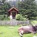 <b>Hubertus Kapelle.</b>