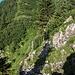 Entlang der Ochsenhofer Köpfe wechseln sich steilere Passagen...