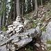 Steil schwingt sich der Steig den Berg hinauf