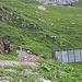 Neue, rindertaugliche Transportseilbahn zum Oberstafel der Alp Alplen