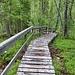 Treppenanlage am Kleinen Bärenpfad