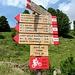 Palina poco sopra al rifugio con i vari sentieri<br />Pizzini 1:40 (strada) o 2:00 (sentiero della caserma)
