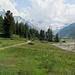 Ab dem Hüttenweg beim Restaurant Roseg wird's alpin.