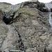 Der kurze Steig am untersten Felsband.