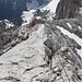 Im Abstieg vom Kleinen Koppenkarstein (via Westgrat-Klettersteig) - Langsam kommt die Hunerscharte wieder näher (rechts).