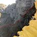 Die Abstiegsroute, alter Tomliweg, durch die Nordwand des Tomlihorns.