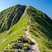 Finaler Anstieg auf´s Fellhorn.