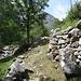 Östlich des Fiume Peccia geht's ins Tal hinein. Man könnte statt auf dem Wanderweg auch auf dem Fahrsträsschen gehen (hier nicht auf dem Bild).
