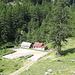 <b>Cortino (Alpe Campo la Torba) - Lariceto pascolato.</b>