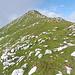 Blick von der Tiroler Hütte auf die Rotwandlspitze