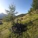 <b>Occultata la mountain bike all'ombra di un piccolo larice, mi avvio seguendo il sentiero per il Pass Giümela.</b>