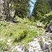 Blick vom Einstiegsdepot hinauf in die Abstiegsrinne