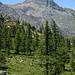 Mont Avic.
