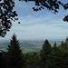 Blick Richtung Obernai