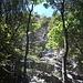 In den etwas grünen aber wunderbaren Ausstiegslängen.