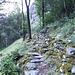 """<b>""""Der steinige Weg zum Brot"""".<br />Poche decine di metri più in alto, sul ripido pendio rivolto ad ovest, si vedono dei campi terrazzati, ottenuti con la costruzione di muri a secco. Come spiegano i pannelli didattici, durante il giorno la parete rocciosa e i muri assorbono il calore e dopo il tramonto continuano ad emanarlo rallentando il raffreddamento. La cerealicoltura sui terrazzi in Calanca fu importante fino alla metà del XIX secolo. La Comunità di lavoro Val Calanca si impegna per restaurare l'antico paesaggio a terrazzi, nonché a ripristinare alcuni sentieri.</b>"""