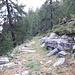<b>Il Sentiero Alpino Calanca.</b>
