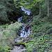 Kleiner Wasserfall am Wegrand