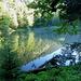 Kleiner Teich am Wegrand