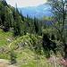 Der Prinzregentensteig schlängelt sich ins Tal