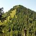 Der Hirschberg. An der Wiese gehts gleich bergauf