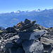 panorama sulle Alpi