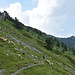 Auf dem Weg zum Col de Raus