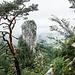 Hat mit Kiefer und Nebelwolken irgendwie Südostasien-Flair: Blick vom Kleinen Barmstein zum Großen Barmstein.