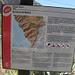 Barranco (burrone) de Masca, uno dei più importanti del Parco Rurale del Teno, sia per valore paesaggistico che per caratteristiche biologiche.