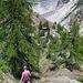 Abstieg zur Burghütte