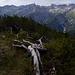 Blick ins Medriol. In Bildmitte die Große Leiterspitze