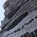 """Im Aufstieg zum Gran Paradiso - Zum """"Madonnen-Gipfel"""" erleichtern einige Stahlklammern (hinten) die kurze, aber quasi senkrechte und durchaus luftige Kletterei. Bei eisigen Verhältnisse - wie heute - ist man über zusätzliche Sicherungsmöglichkeiten durchaus froh."""