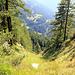 Imposant dévaloir proche de Rigi et route du Simplon.