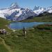 Papa, Dank Alpenorni die richtigen Berge: Papa vor Bachalpsee und im HIntergrund links Schreckhorn, halbrechts Finsteraarhorn, rechts außen Ochs ( Klein Fiescherhorn)